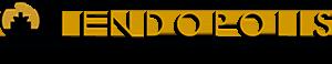 Lendopolis - La plateforme de financement participatif des TPE / PMEfrançaises